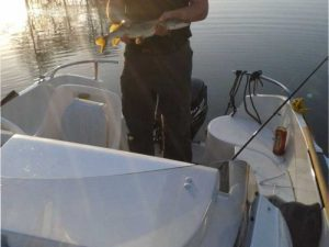 smart-fisher-2